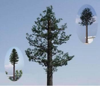 植物仿生造型设计手绘